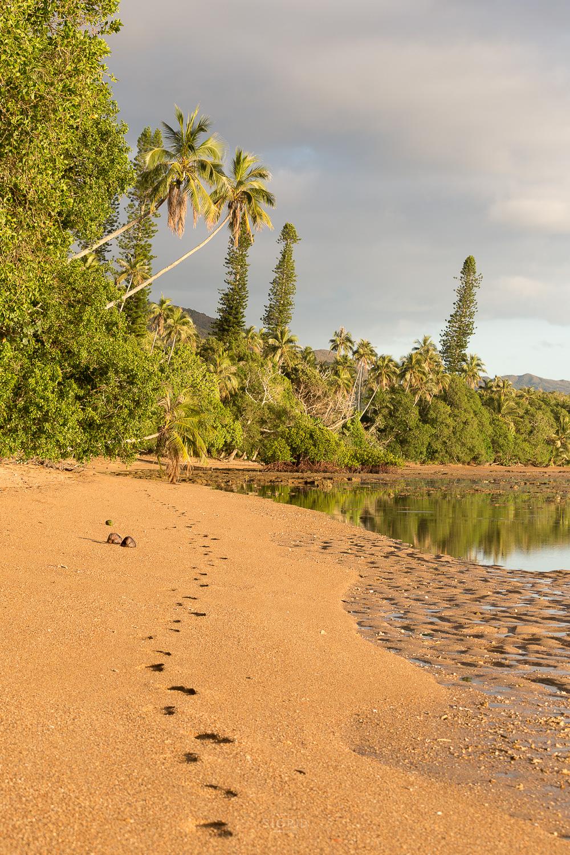Nouvelle Calédonie lever soleil camping tribue yaté lagon mer plage palmier lumière